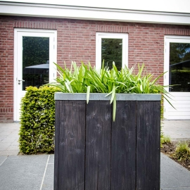 RVS Rand, Plantenbak, buiten